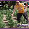 Super Automatic Sativa S.A.S.