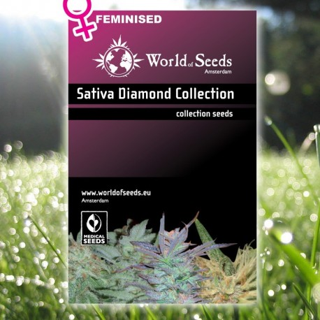Sativa Diamond Collection